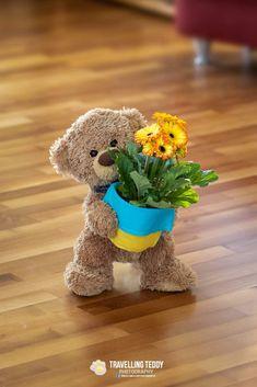 Teddy Bear Hug, Tatty Teddy, Cute Teddy Bears, Bear Hugs, Birthday Wishes, Happy Birthday, Tedy Bear, Bear Gif, Teddy Bear Pictures