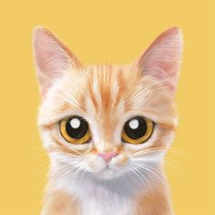 Baby animal drawings, funny cats and dogs, cats and kittens, cat empire, Cute Kittens, Cats And Kittens, Animals And Pets, Baby Animals, Cute Animals, Cat Empire, Baby Animal Drawings, Funny Cats And Dogs, Cat Wallpaper