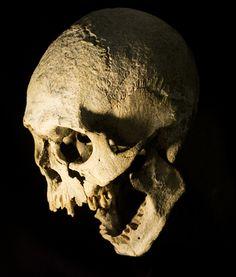 UB_Skull_21.jpg