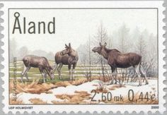 Stamp%3A%20Eurasian%20Elk%20(Alces%20alces)%20(%C3%85land%20Islands)%20(Elk)%20Mi%3AAX%20171%2CSn%3AAX%20162%2CYt%3AAX%20171%2CAFA%3AAX%20171%20%23colnect%20%23collection%20%23stamps