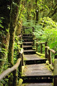 Step by step and stair by stair, be patient, believe, before long you'll be there. - Marc Erlbaum