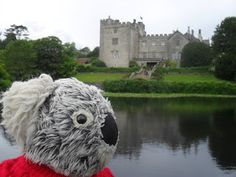 National Trust Scones: GUEST POST: Kenny Bear at Sizergh Castle