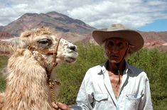 Fotos de Cafayate: Paisajes y Fotografías del norte argentino