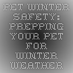 Pet Winter Safety: Prepping Your Pet for Winter Weather