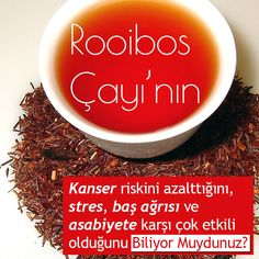 Rooibos çayı, rooibos tea hakkında.