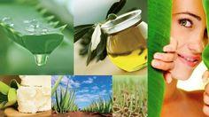 Principalele ingrediente active ale produselor #cosmetice #organice Organicare CaliVita (aloe vera, uleiul de masline, uleiul din germeni de grau, lavanda, rozmarinul, untul de Shea) sunt plante medicinale cu virtuti #terapeutice recunoscute de mii de ani. Produsele sunt adecvate pentru toata familia, chiar si pentru #copii. https://naturapentrusanatate.com/produse-cosmetice-organicare-calivita/