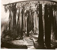 Maquette de décor pour Le Songe d'une nuit d'été, texte de William Shakespeare, mise en scène de Max Reinhardt.