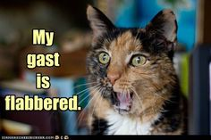 "Tuna: ""I'm getting SHAVED?!"""
