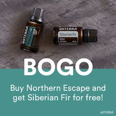 It's BOGO time! Today only, November 19, buy Northern Escape and get Siberian Fir, free of charge. Northern Escape is an exclusive product that's not sold in the US market. Grab yours today while it's available! my.doterra.com/womenshealth