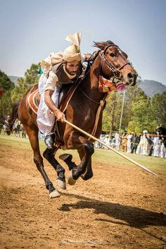Tent pegging, a cavalry sport of ancient origin tests the rider's skill with edged weapons and ground targets. Marwari Horses, Polo Horse, Village Photography, Arabian Art, Tent Pegs, Character Poses, Asian History, Dressage, Culture