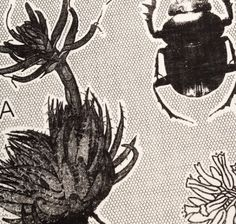teatowel print with flowers and beetles African Crafts, African Design, Beetles, Tea Towels, Surface Design, Design Projects, Bugs, Butterflies, Bloom