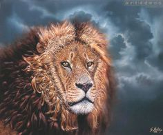 images of big cats | Big Cat Painting by Sasha Montiljos