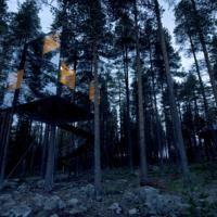 Treehotel/ spiegel hotel