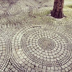 Beautiful print idea Stone Walkway around the few decorative trees.perfect for mowing (single circle) and don't have to weed.plus flowers would detract from the trees!