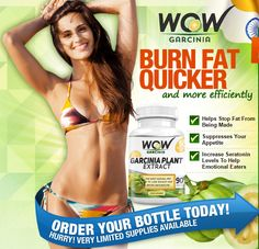 Wow Garcinia provides you with the potential to manage your cravings. It raises your serotonin level to elevate brighter mood so that you can make much healthier choices concerning on your diet #Fitness #Heath #weight loss