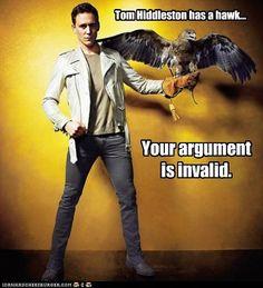 Tom Hiddleston Sexy | Tom Hiddleston has a hawk... - Cheezburger