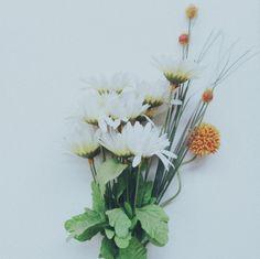 A (kind of) sad flower