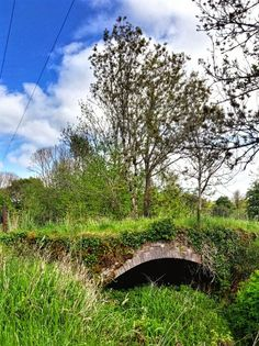 Old Bridge Waterford. This disused bridge was on the old Cork road out of Waterford, but now nature is slowly taking it back.