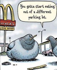Funny Cartoon Joke – LOL!! | Jokes R Us
