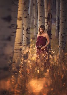 In the Golden Woods by Lisa Holloway on 500px