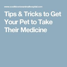 Tips & Tricks to Get Your Pet to Take Their Medicine | Animals and pets | Pinterest https://pin.it/9Fm8Tsq.    #gpaws #bostondogboarding