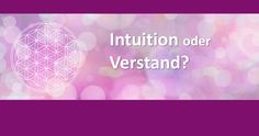 Intuition oder Verstand?