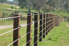 Electrobraid fencing with wooden posts is horse safe and looks great