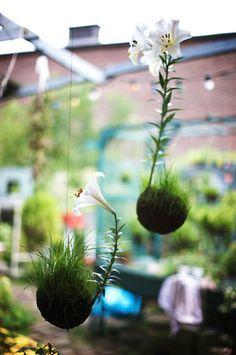 Kokedama, onde o vaso é feito de musgo | Vila do Artesão