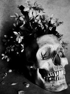 A proper flower pot