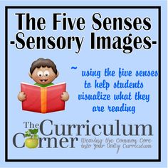 Using the five senses to help students create sensory images while reading. Great, hands on activities with matching books listed. Reading Lessons, Teaching Reading, Teaching Kids, Reading Strategies, Teaching Science, Guided Reading, Learning, Poetry Activities, Sensory Activities