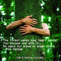 Gentle heart. www.dogwoodalliance.org