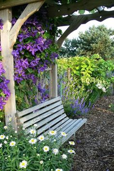 Arbor with clematis & bench | Outdoor Areas