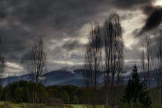 Niebla en el valle - null