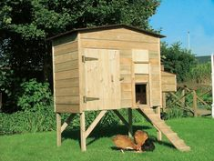 Fantastic Chicken Coop Costco Decorating Ideas With Pics For See more inspirations about Chicken coops, Chicken roost and Chicken art. Large Chicken Coop Plans, Backyard Chicken Coop Plans, Chickens Backyard, Chicken Roost, Chicken Art, Outdoor Furniture Sets, Outdoor Decor, Permaculture, Farmhouse Decor