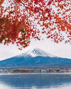 """4,030 """"Μου αρέσει!"""", 17 σχόλια - Nady (@tadaetadae) στο Instagram: """"Третий раз за эту поездку возвращаюсь к горе Фудзи 🗻и каждый раз передо мной открываются новые…"""""""