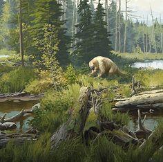 Megalonyx grazing in a boreal bog - Beth Zaiken