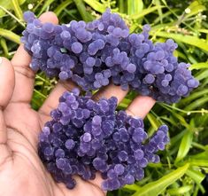 "Purple botryoidal ""grape"" Agate (Chalcdony) --- Indonesia"