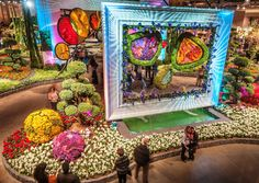 The PHS Philadelphia Flower Show blooms at the Pennsylvania Convention Center in 2015 from Saturday, February 28 through Sunday, March 8. Description from uwishunu.com. I searched for this on bing.com/images