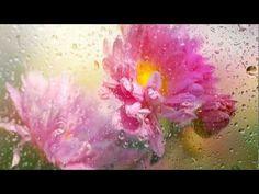 Leo Rojas - ☂ Silent Rain