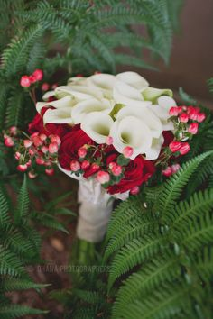 humphrey's half moon inn wedding //red and white wedding bouquet with white lillies and red roses