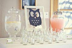 Owl Baby SHower