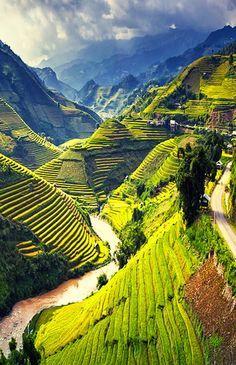 Mu Cang Chai , Vietnam.  Den passenden Koffer für eure Reise findet ihr bei uns: https://www.profibag.de/reisegepaeck/