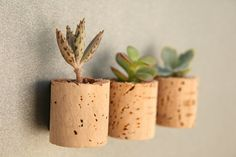 Cute idea for re-purposing wine corks by Alissa Rose on @Etsy! $8