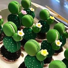 """Résultat de recherche d'images pour """"macarons cactus"""""""