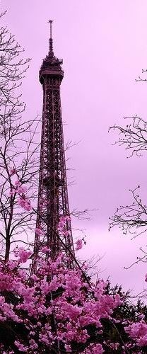 The Eiffel Tower in a Purple haze.