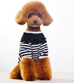 Cute-dog-clothes-stripe-dog-s-t-shirt-with-gillter-bow-unique-neck-dog-s-summer-1.jpg (500×565)