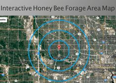 Visualize how far from the hive your honey bees could fly while foraging for pollen and nectar.