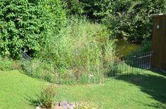 Wir möchten gerne noch 3 Meter Teichzaun light-125-roh bestellen.  Anbei senden wir Ihnen außerdem ein paar Bilder unserer letzten Bestellung bei Ihnen! Wir sind mit dem Zaun anneau-80-roh super zufrieden und er passt sehr schön in unseren Garten! Mit freundlichen Grüßen Carolin W