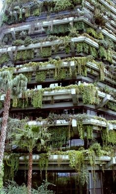 Vertical Garden.. Barcelona, Spain