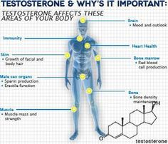After trying multiple products, Testosteroxn actually worked for me. I am a 40 year old man.